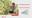 ROCKWOOL Q1 Report 2019